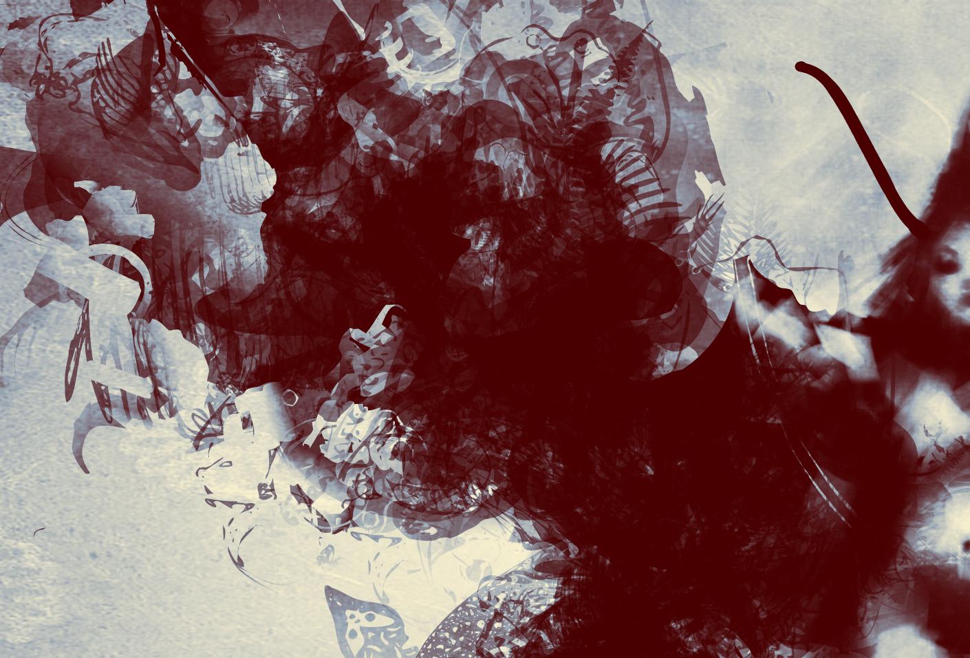 wings1-d.jpg