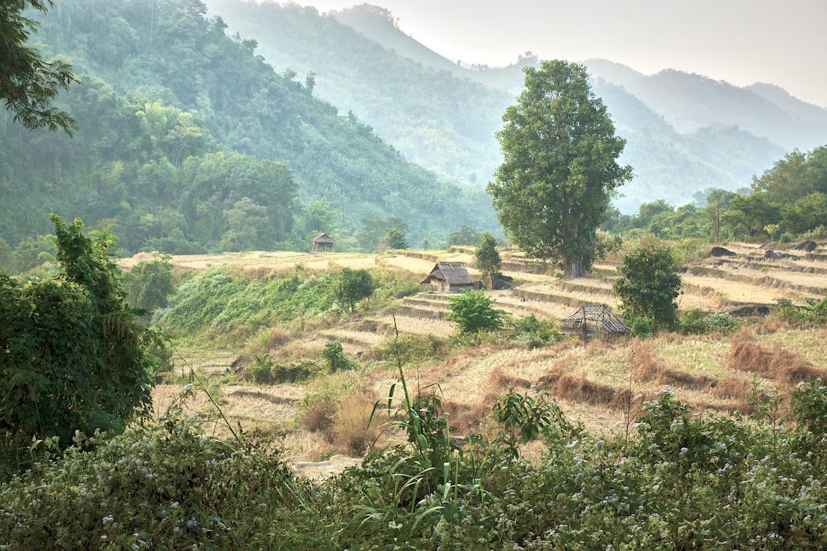 Khasar_S_PansariValley_ShanState_Myanmar_Winter_2013.jpg