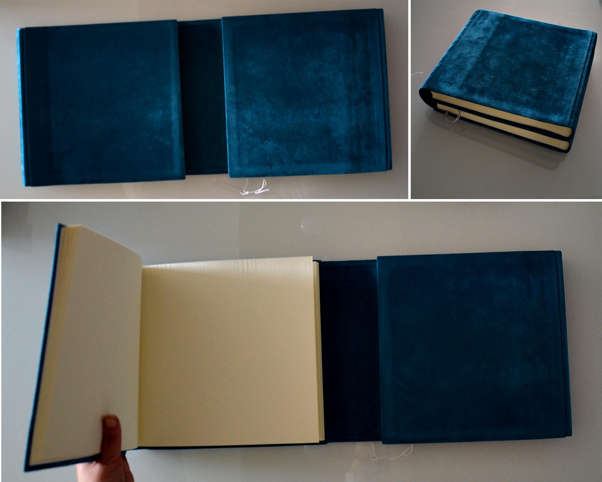 diplo blue copy.jpg