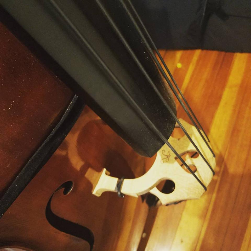 Gerold Gensller Gut strings