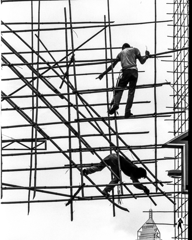 The Scaffold Builders in Happy Valley