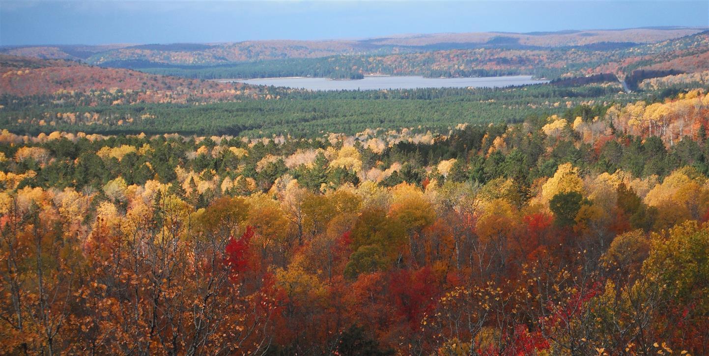 Colourful Scenic View
