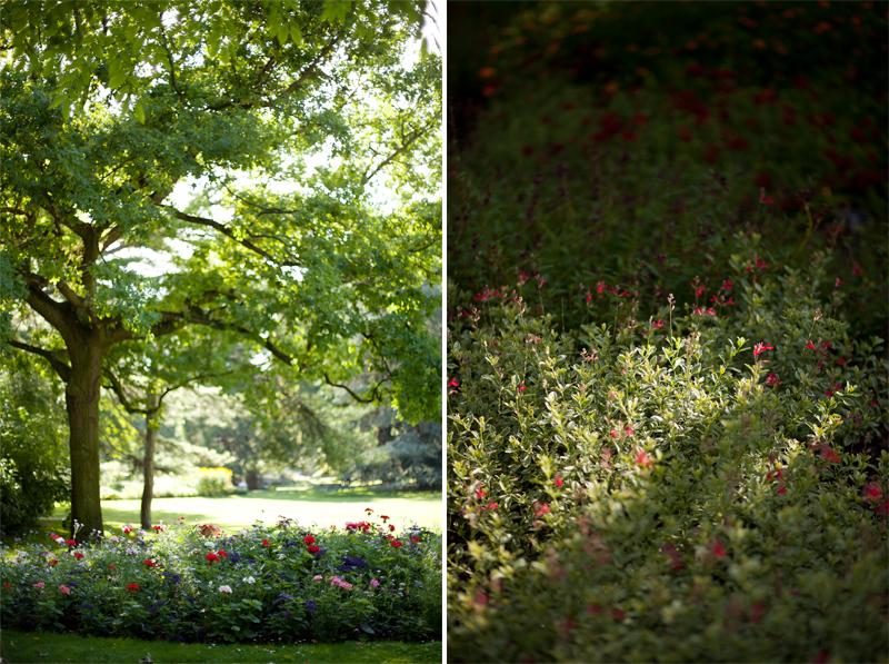 jardin-du-luxembourg-katie-donnelly3