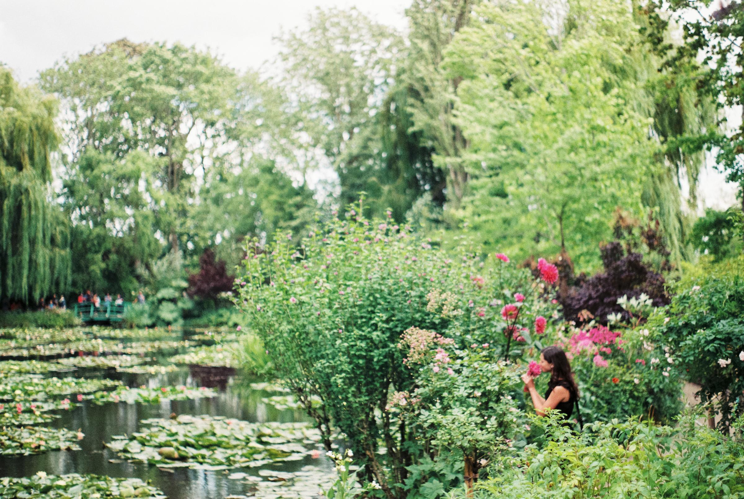 smelling-roses-monet-garden-france