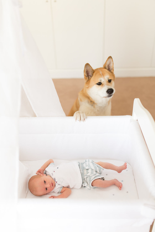 newborn-photo-shoot-styling-inspiration-at-home-paris-photographer_007.jpg