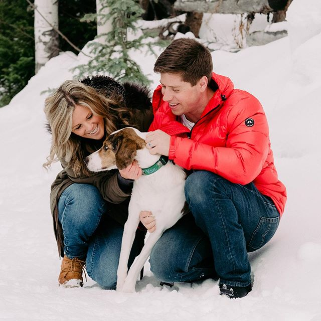 At Two Elk Studios, we know that your Fur Babies are often your first children and we love celebrating how they bring joy to your family! #petportraits #familyportraits #winterportraits #vailfamily #vailfamilyportraits