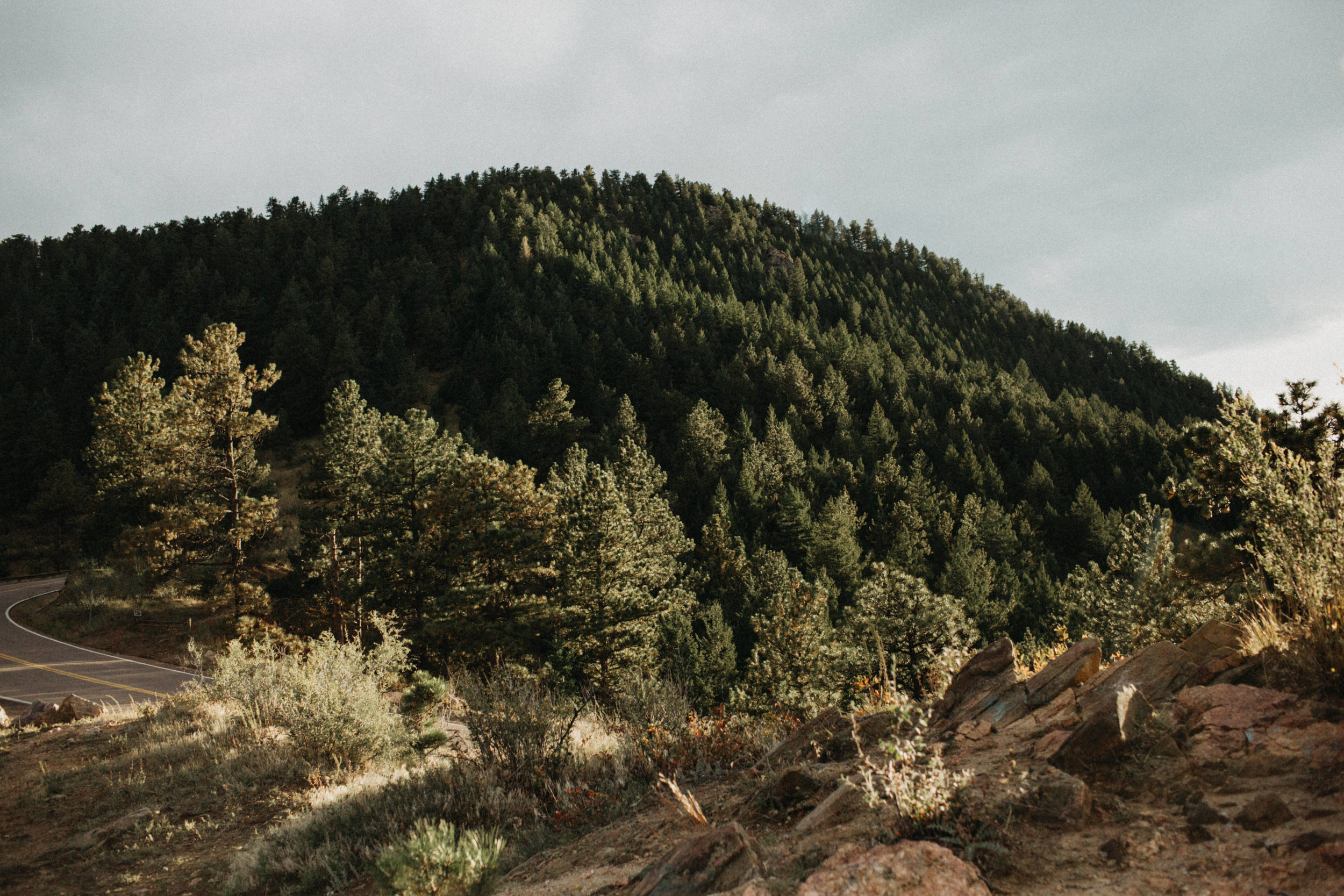 Rocky Mountain Engagement Photographers