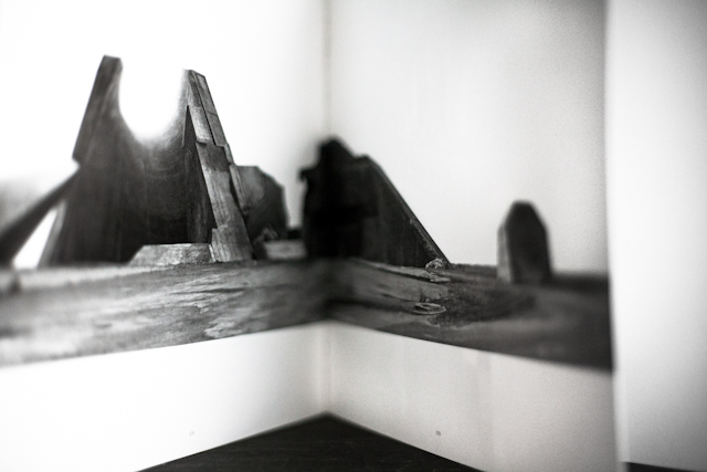 NICOLAS MOULIN WENLUDERWIND SERIES [2009] IN SOME/THINGS MAGAZINE CHAPTER004 / THE WINGS OF A LOCUST