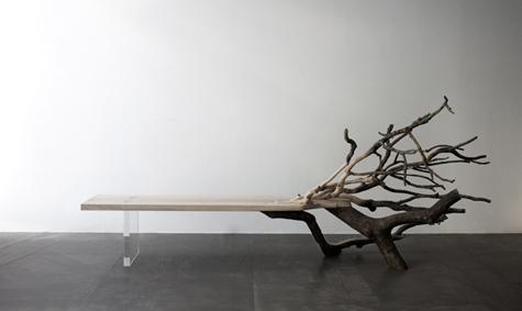 benjamin graindorge,  fallen tree , banc, 2011