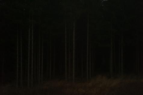 photography by laurent segretier