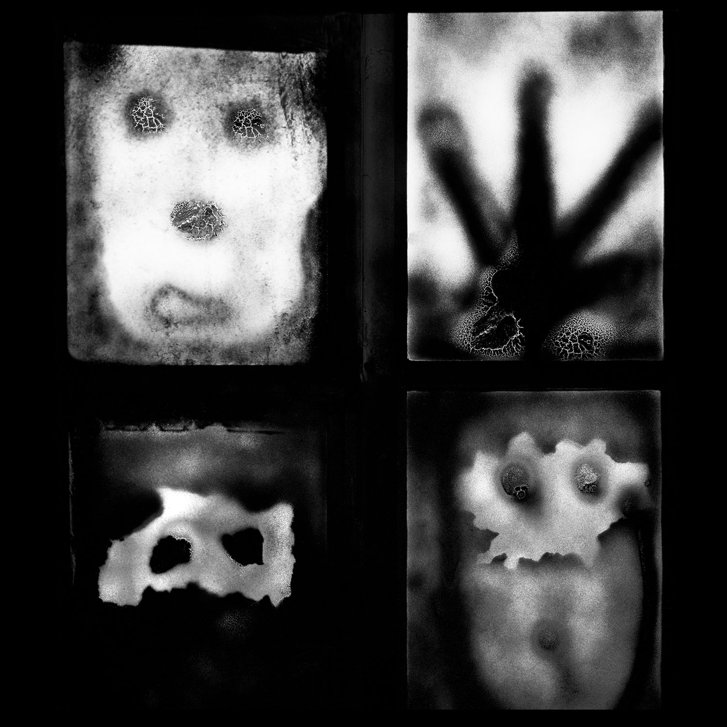 Manifestation, 2007.  From the upcoming book ''The Theatre of Apparitions''  © Roger Ballen