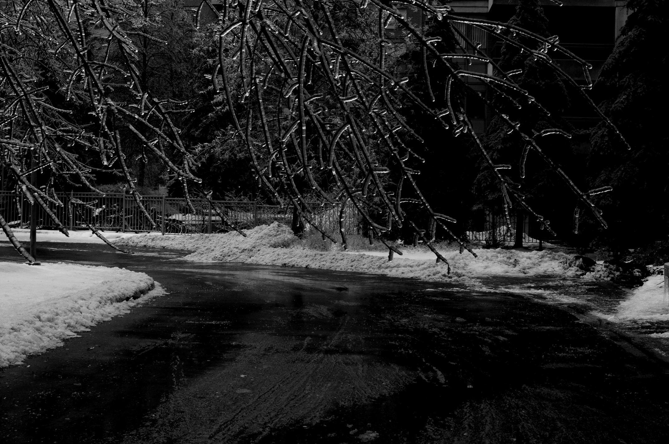 Hanging Low Ice Storm 2013.jpg