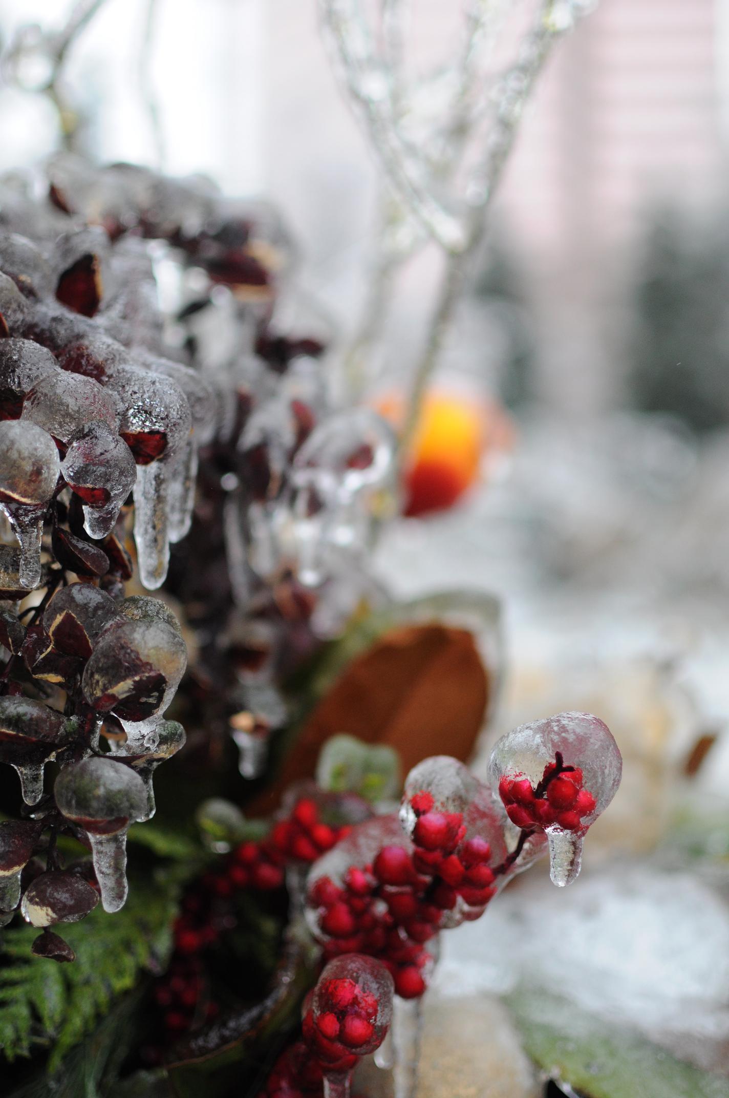 Frozen centerpiece.jpg
