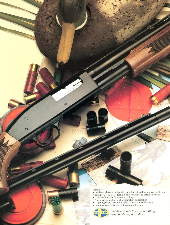F.shotgun.jpg