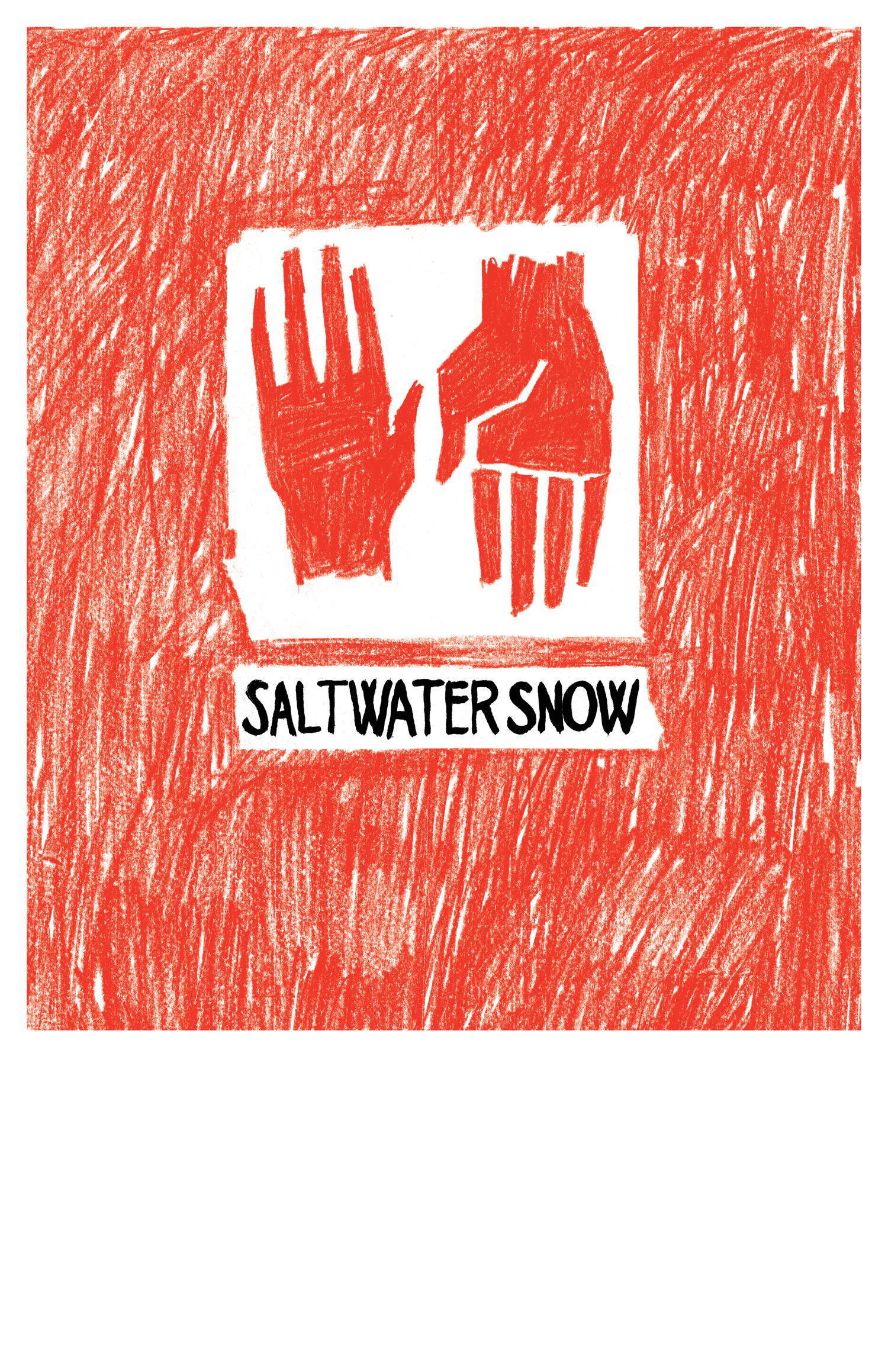 SaltwaterSnowWEB.jpg