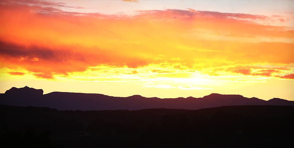 spring-water-farm-contact-sunset.jpg