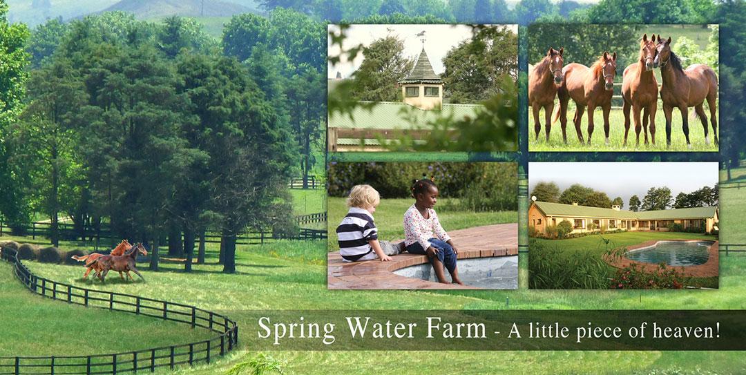 Spring Water Farm