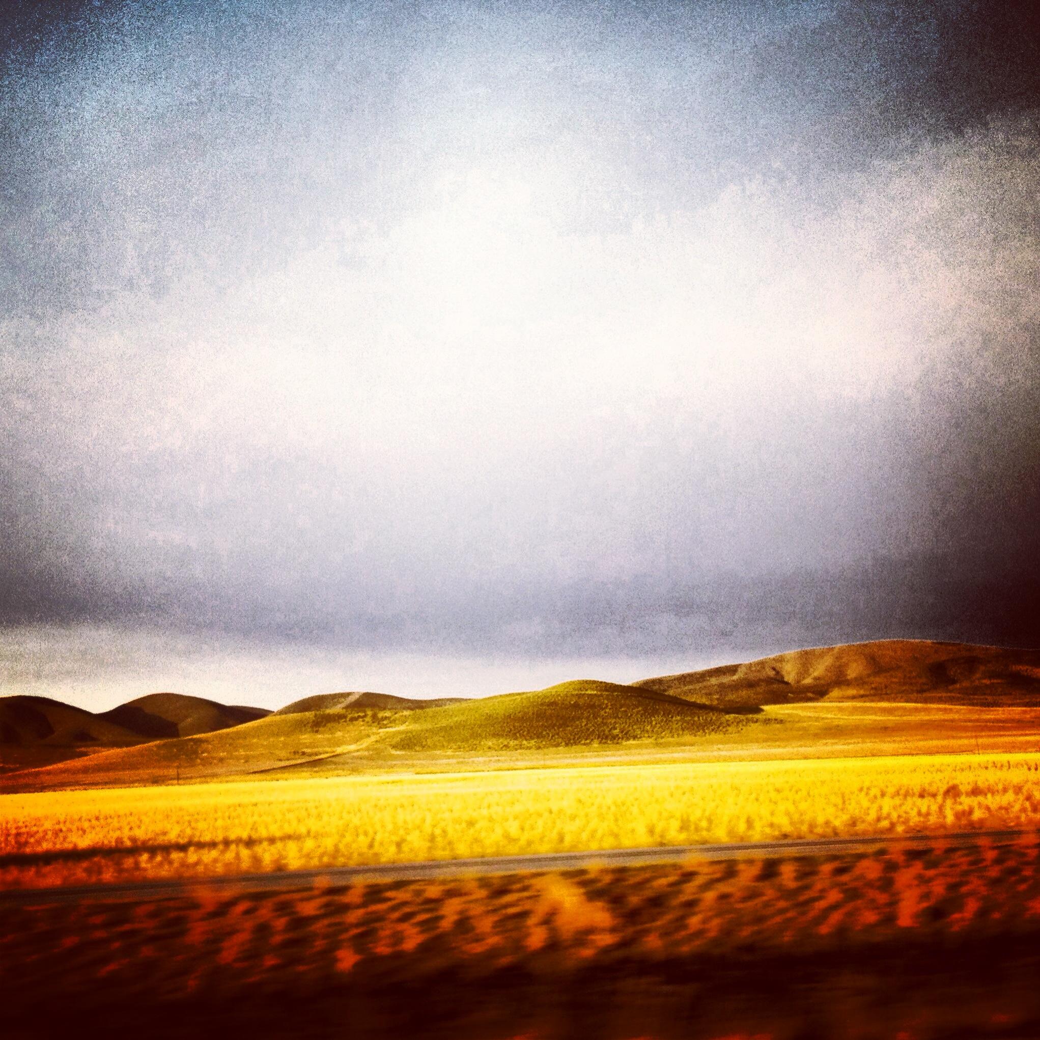 Fire | Sun Valley | 2014