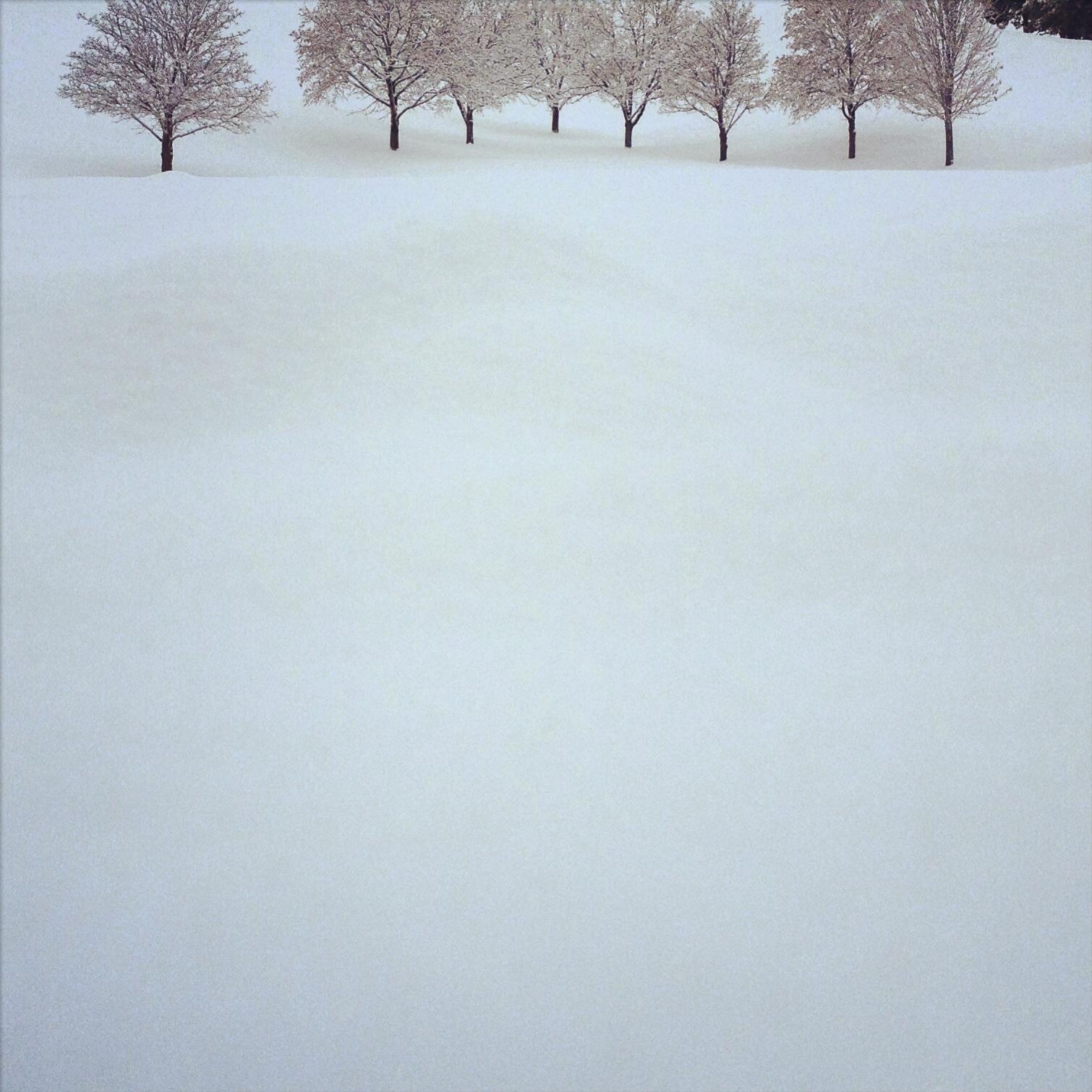 Winter | Idaho | 2013