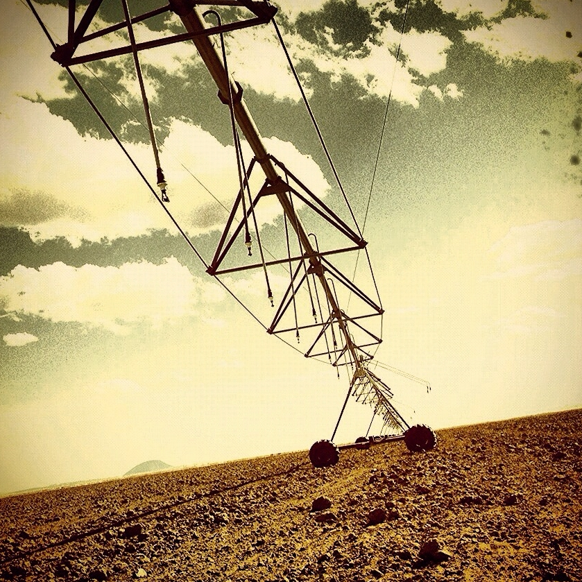 Montana Soil | 2011