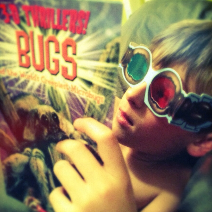 Bugs | Finn | 2013