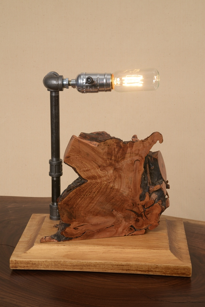 Tree root focal point with industrial pipe lamp made by George Wurtzel
