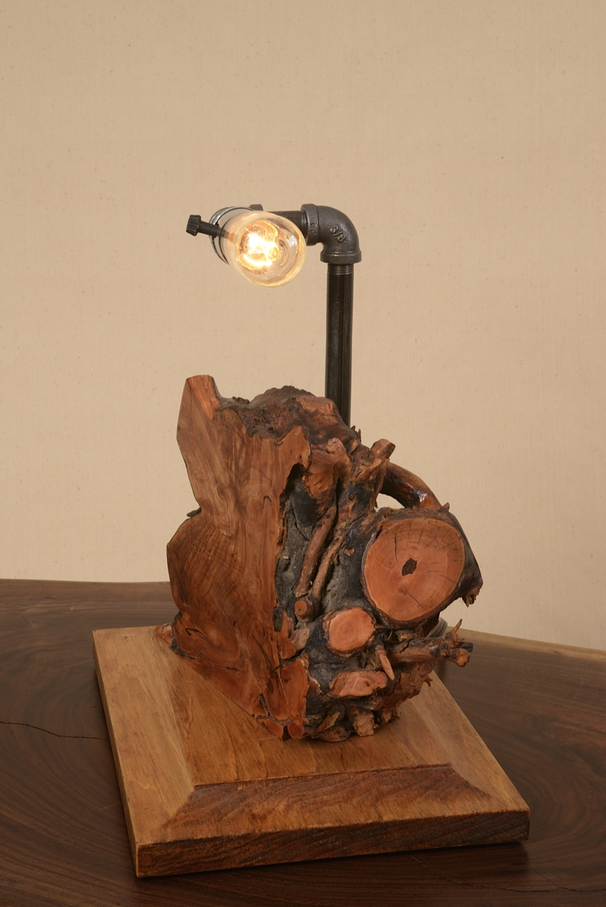 Nature meets the industrial age. George Wurtzel's industrial lamp