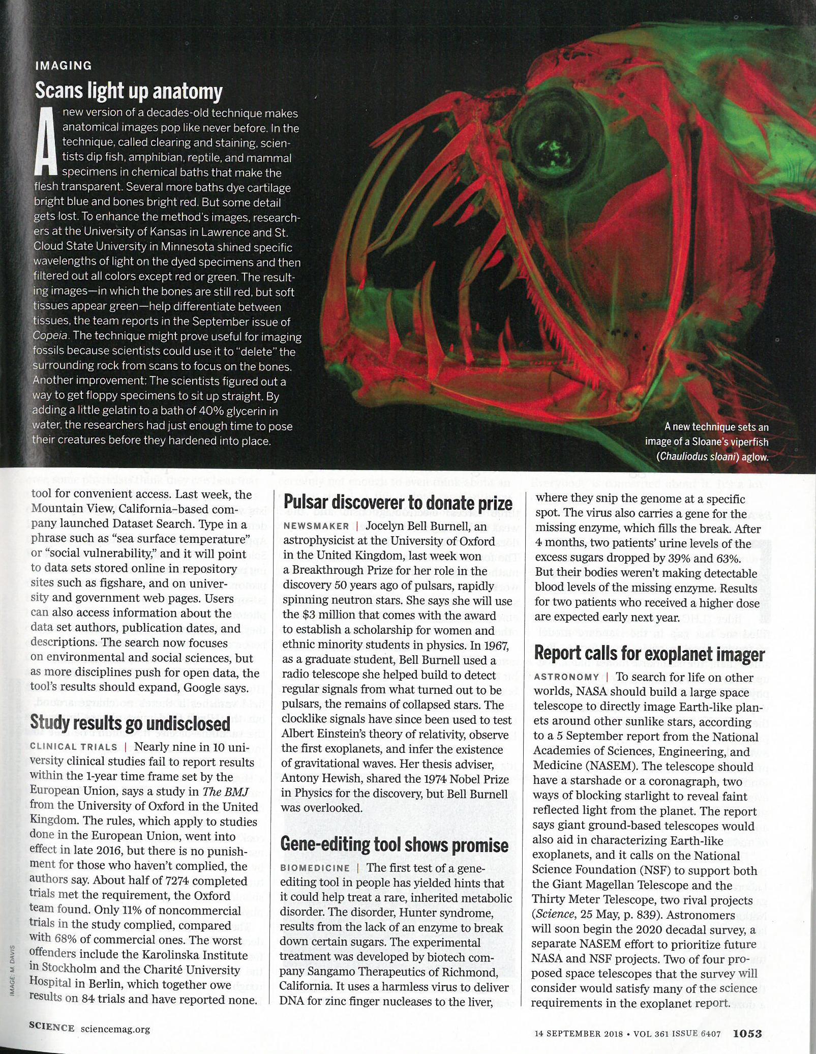 "Guterman, L.  Science . ""Scans light up anatomy."" September 14th, 2018 (Print Magazine)"