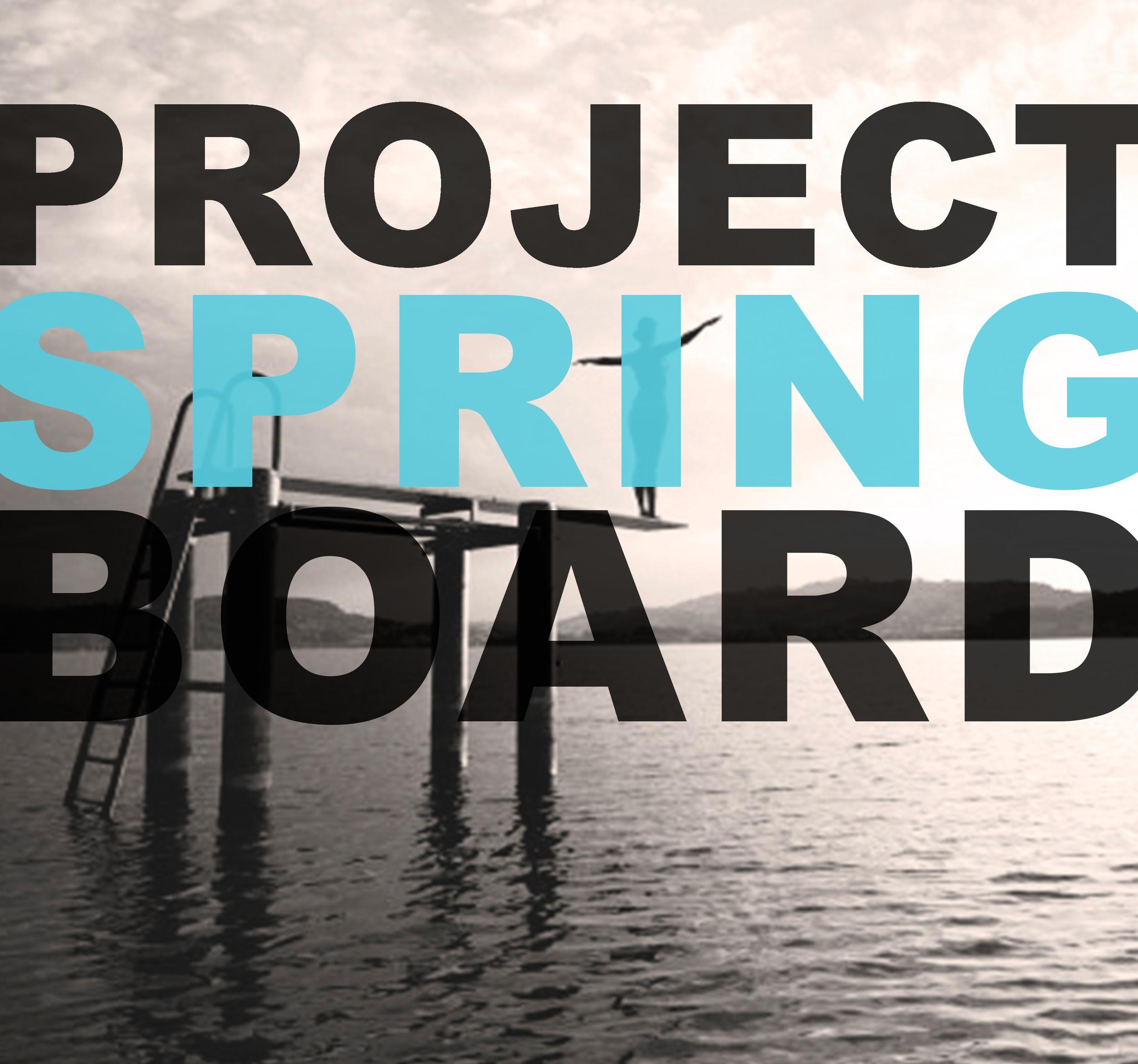 springboard black.jpg