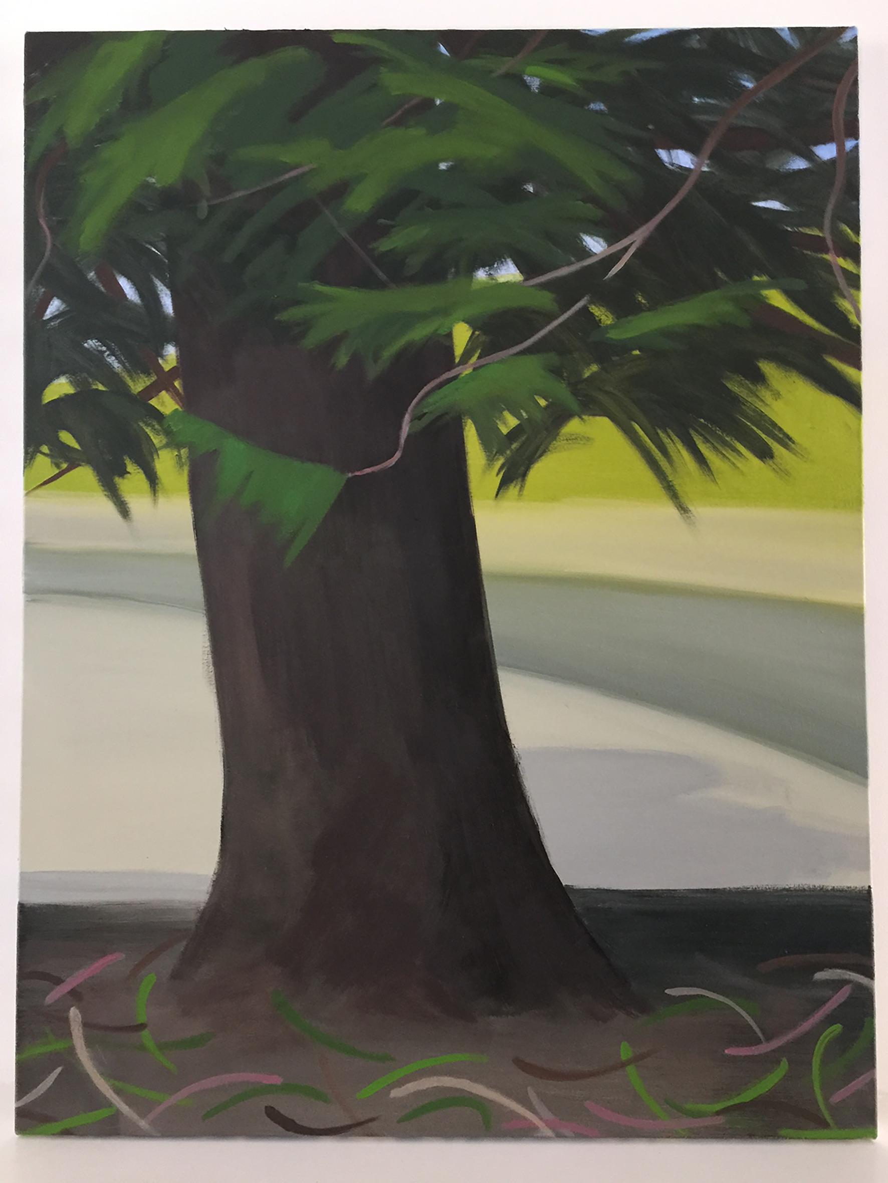 Parkland Pine, 87.5 x 66cm, oil on canvas, 2017.jpg