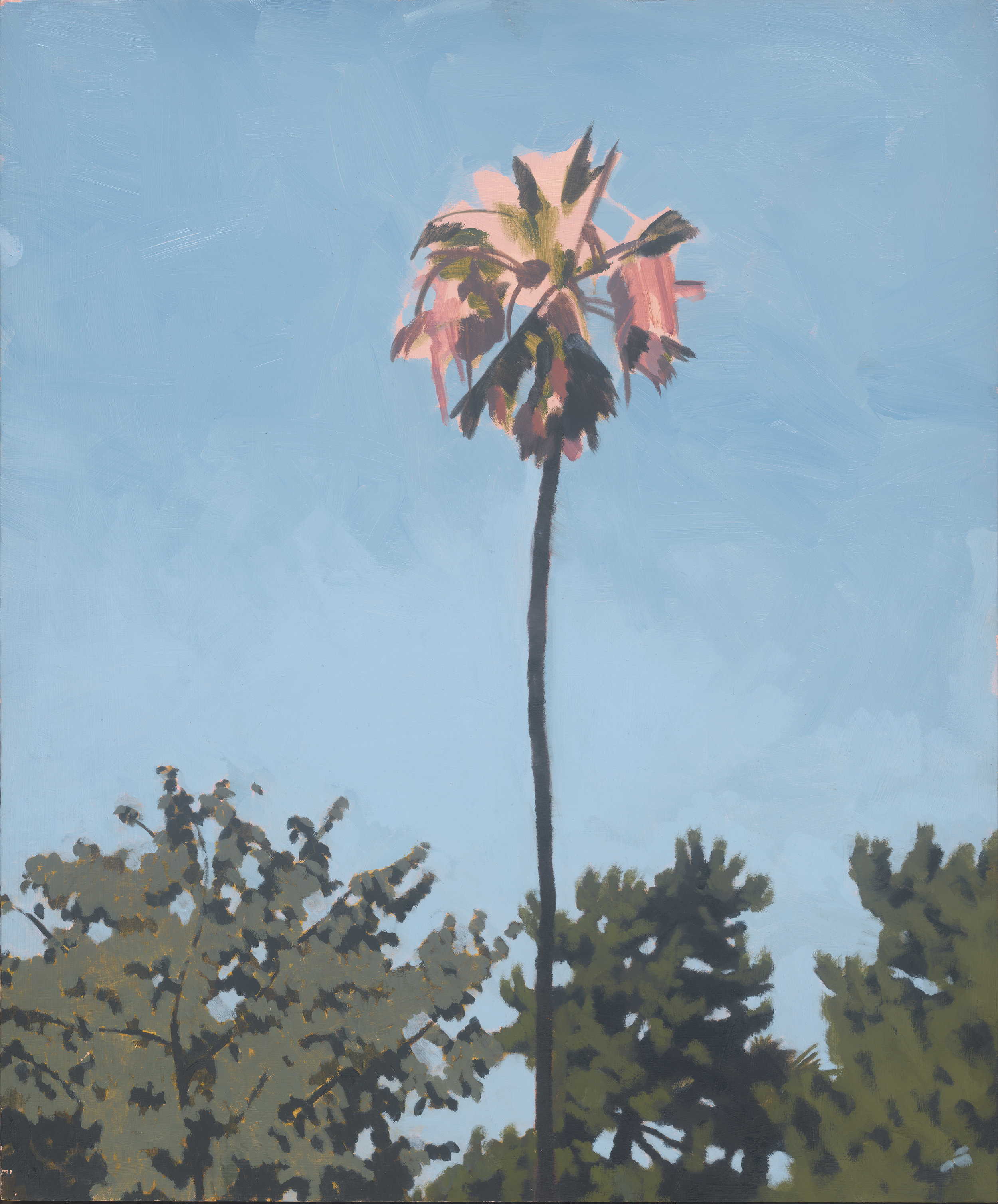 Pink Palm, oil on board, 71 x 59 cm(sold)
