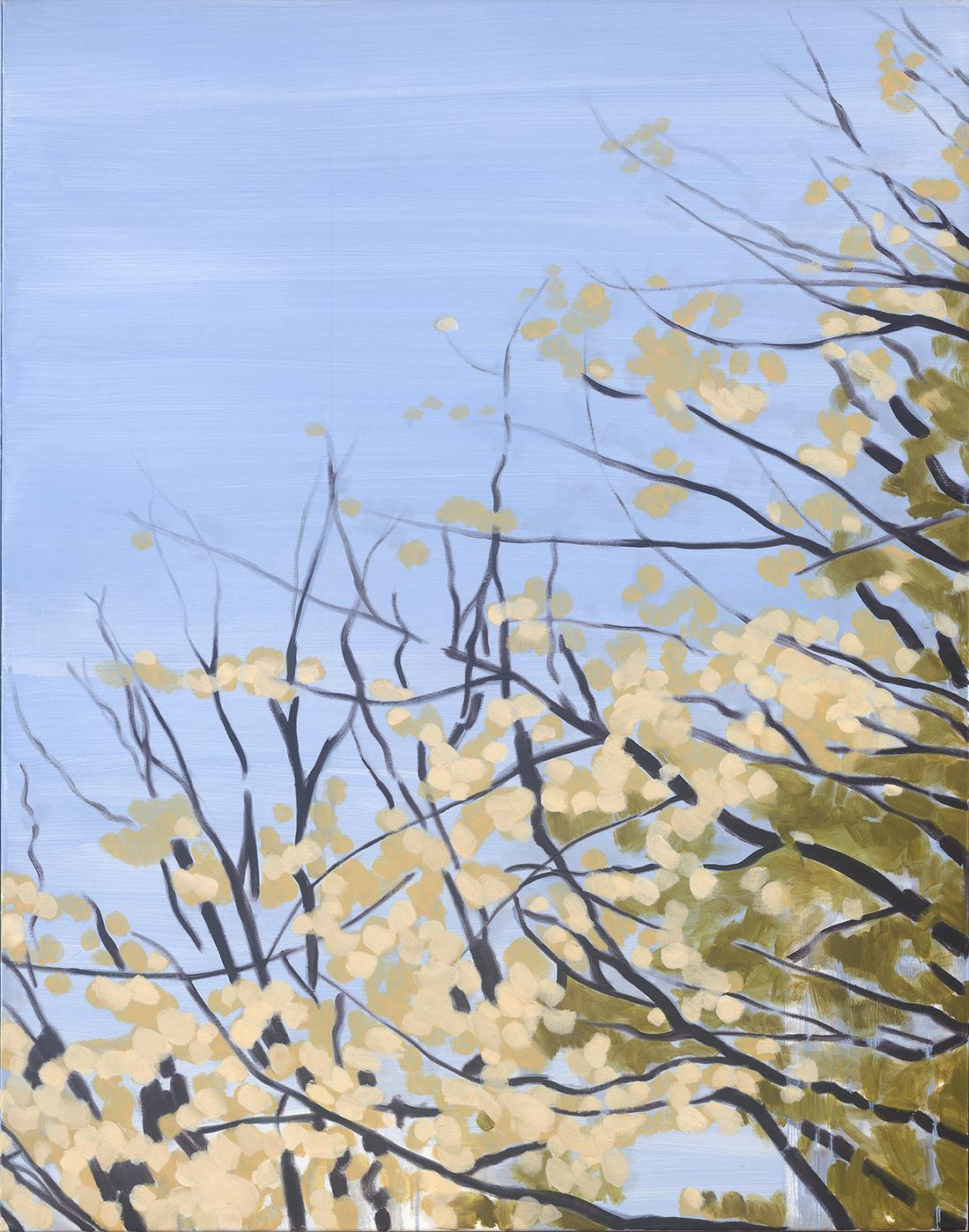 Blossom Sky, oil on linen, 107 x 83.5 cm (sold) (Finalist Ravenswood Womens Art Prize 2017)