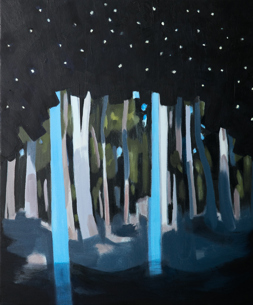 Night Fall, 66 x 56.5cm,oil on polyester (sold)