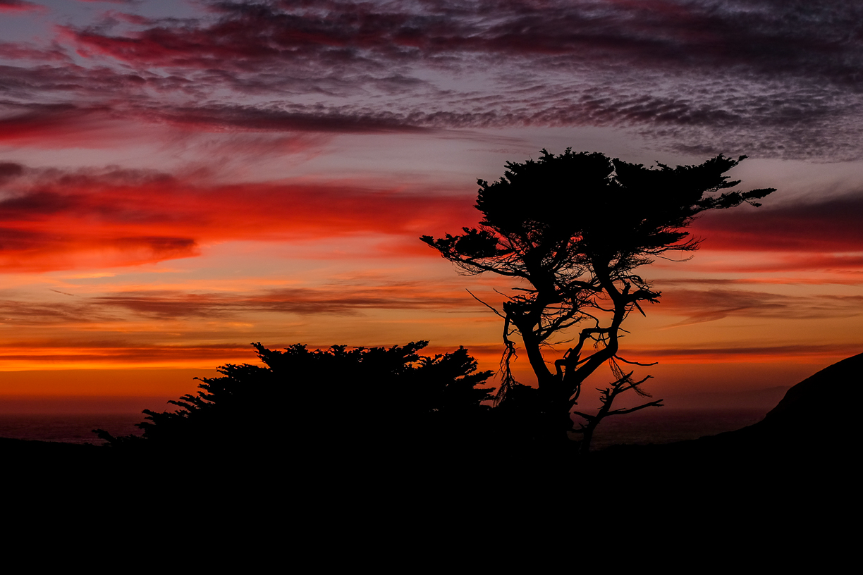 Bodega Bay California.  This is a spot called Bodega Head and is one of my favorite sunset locations.