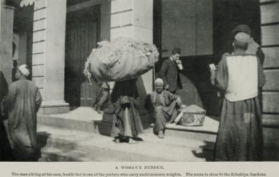 (1911) - TIMEA.jpg