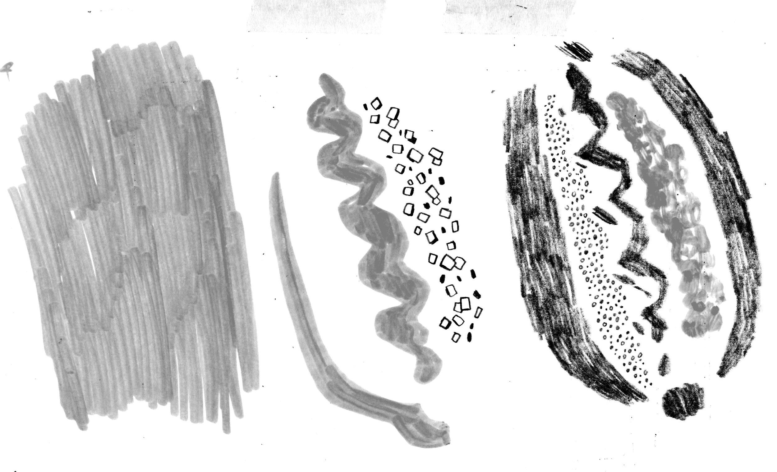 Drew Bardna - Hot Dog Textures