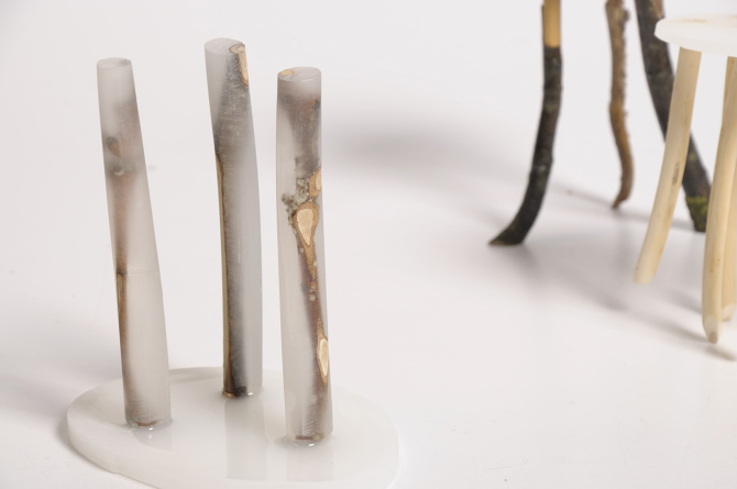 Stools by Wiktoria Szawiel exhibiting the way she encases natural materials where parts come to the surface while other parts remain deep within the resin with a ghostly appearance.