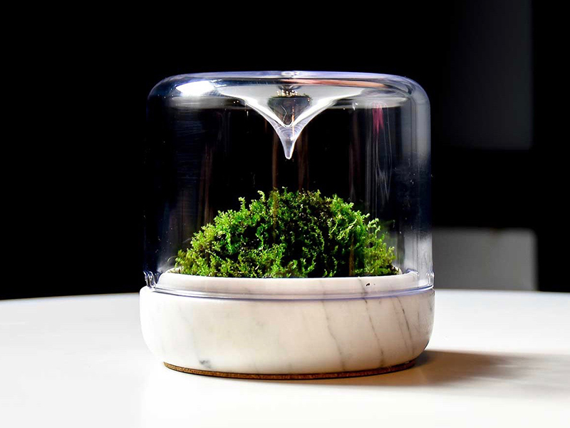 The 'Sanctuary' miniature moss garden, now comes in marble.The design allows for the natural recycling of moisture.