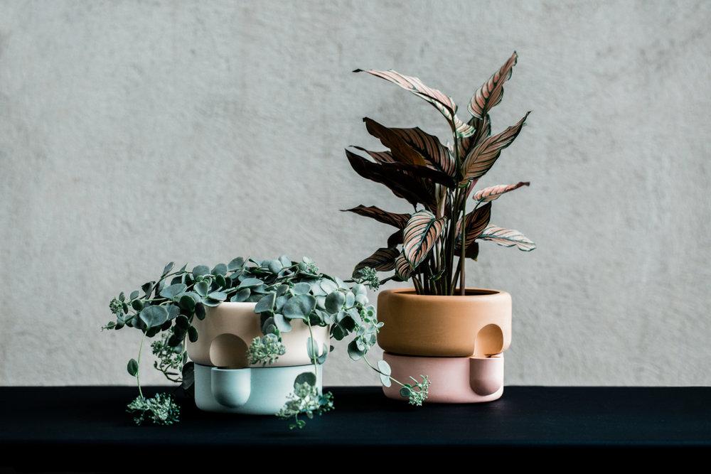 'Rolla' planters by Ann Kristin Einarsen.