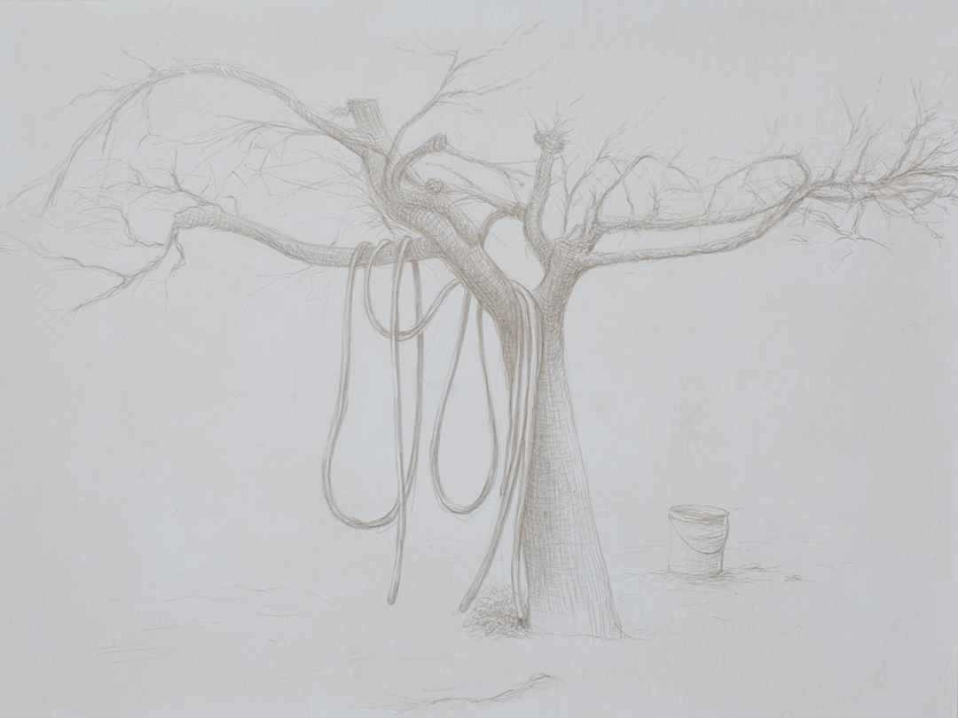 """Valdarno #2 , 2013, silverpoint on paper, 7"""" x 9.75"""""""