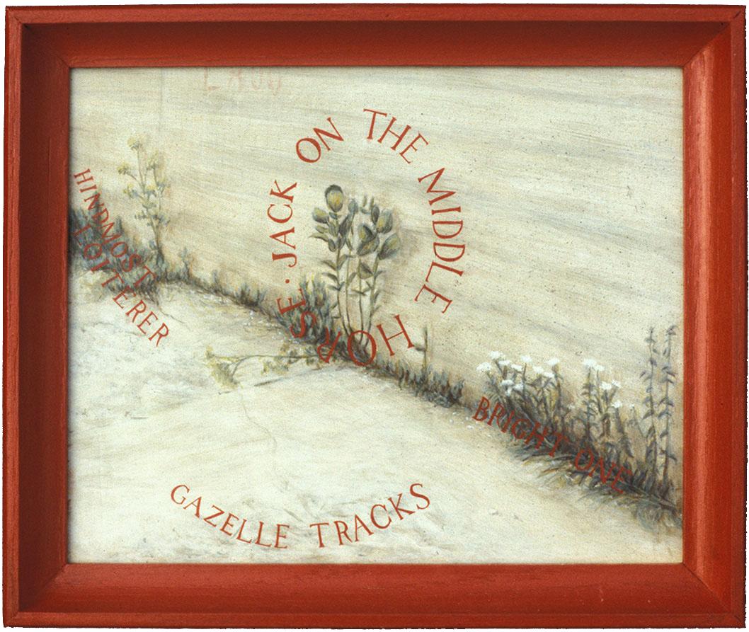 Gazelle-tracks,-for-web.png