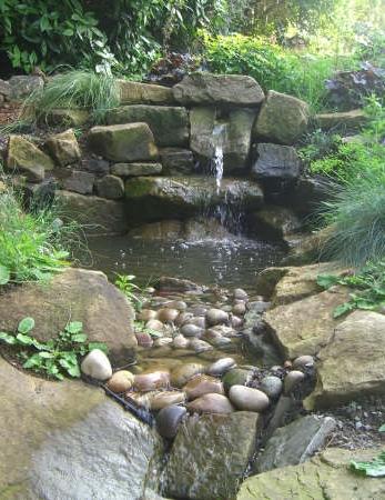 garden landscaping.jpg