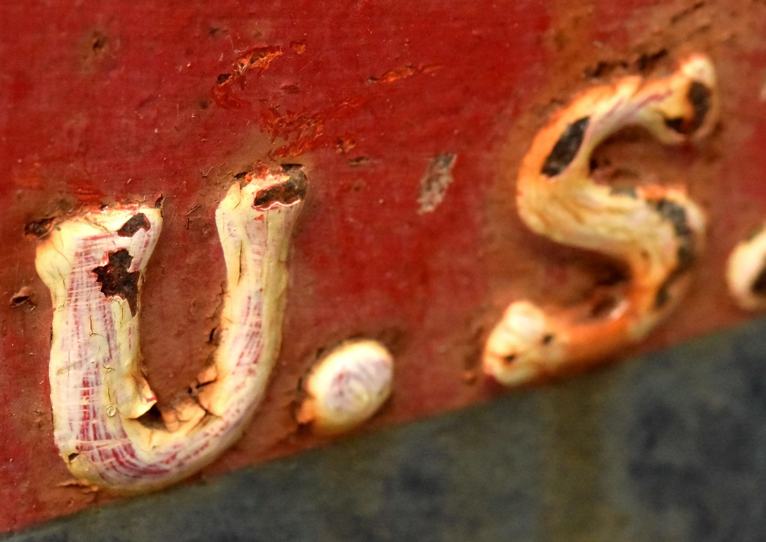 47478-iron-mailbox-macro-detail.jpg