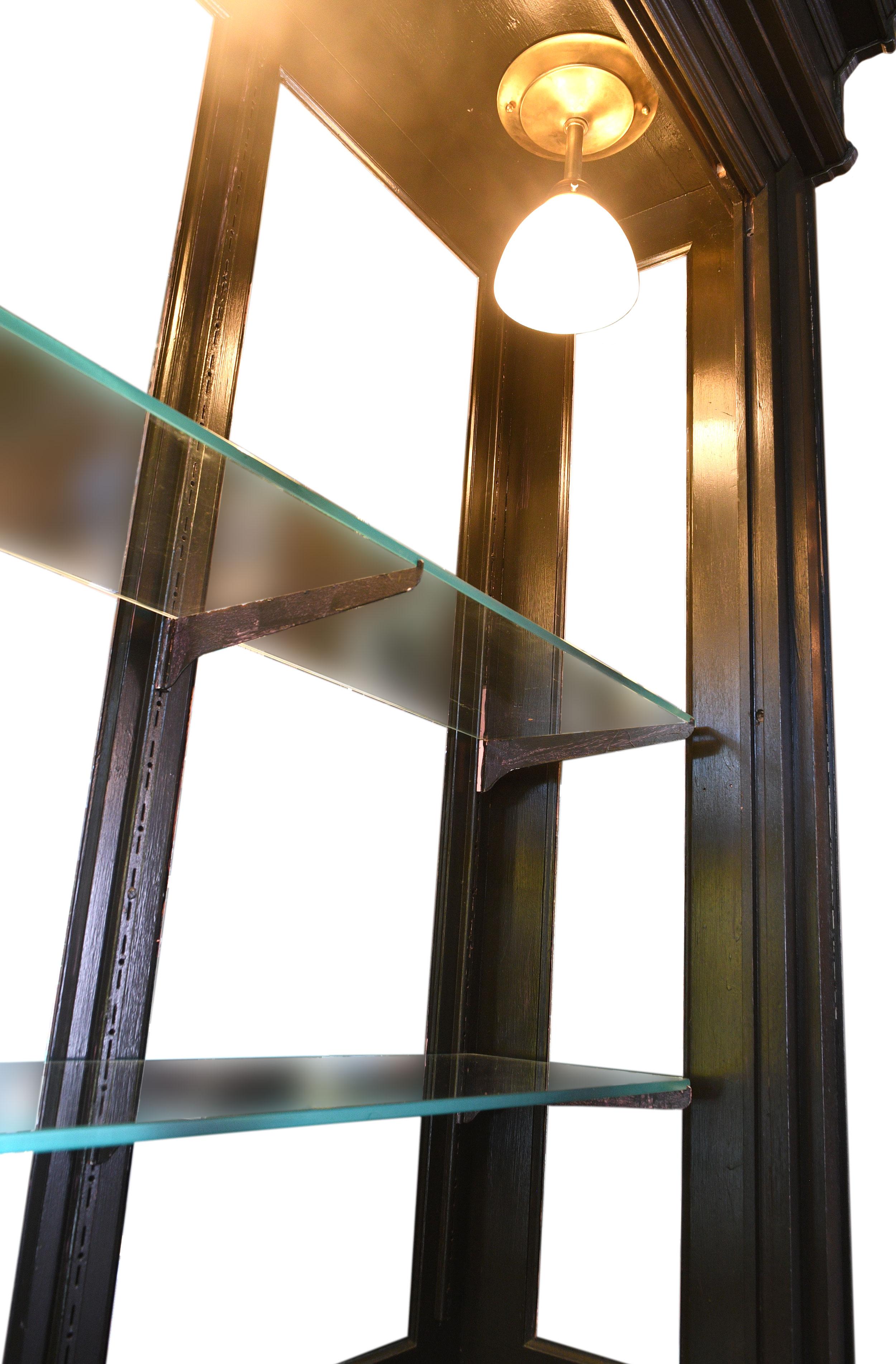 48317-mirrored-cabinet-1.jpg