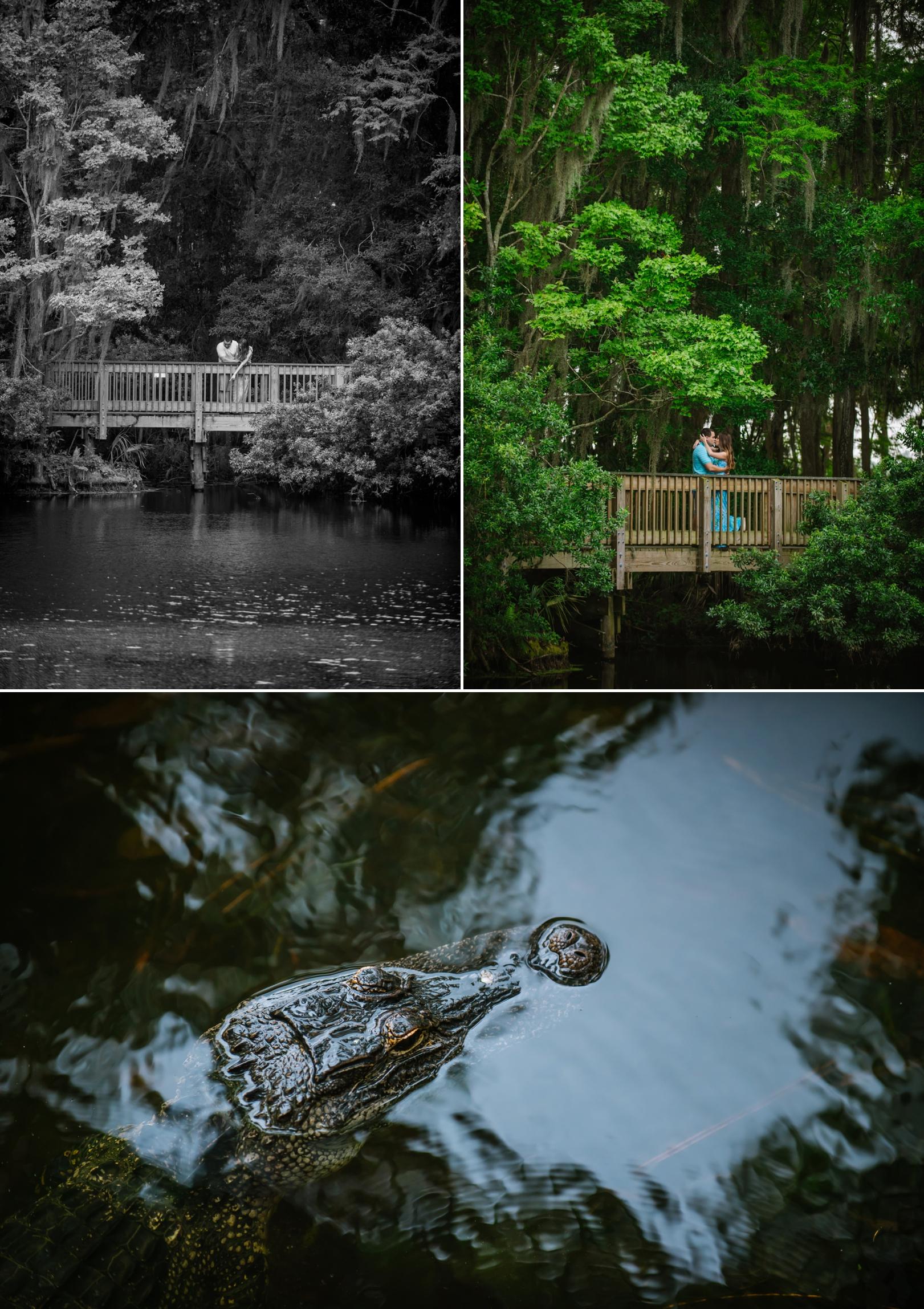 ashlee-hamon-photography-tampa-springs-outdoor-engagement_0002.jpg