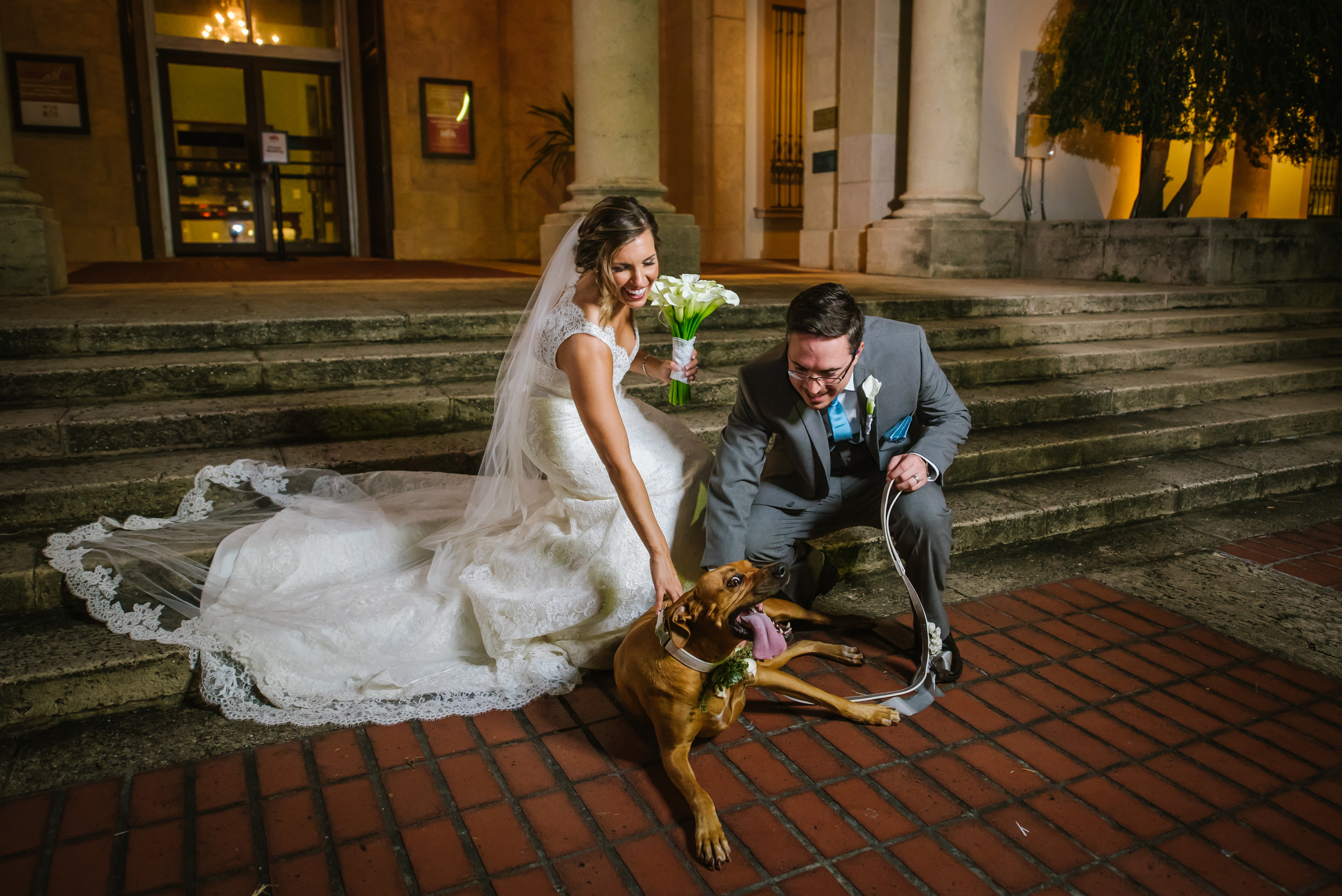 Mark and Jo had an amazing wedding day complete with their fur baby Phoebe! Her face, yep, sums it up.