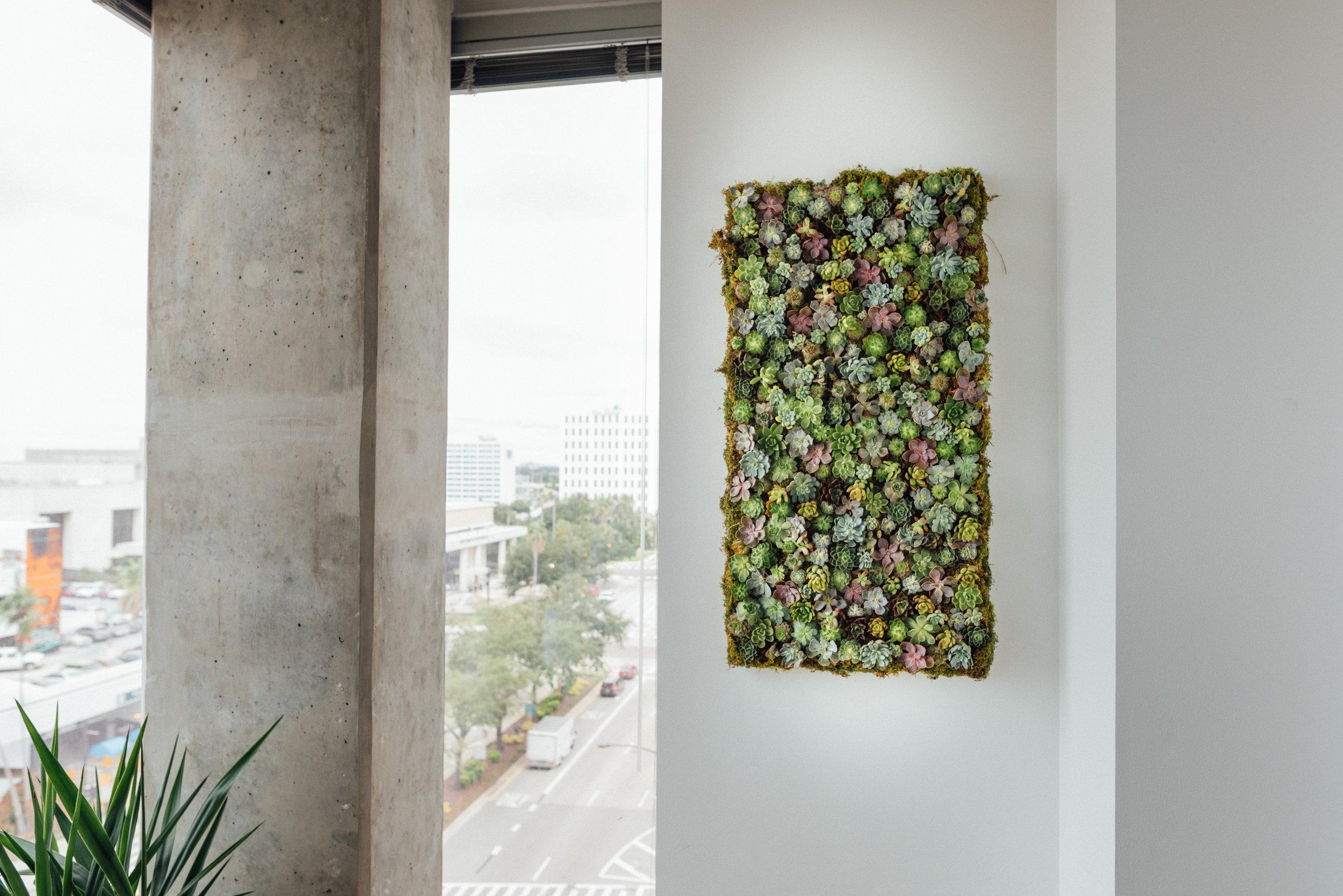 Succulent Wall-21.jpg