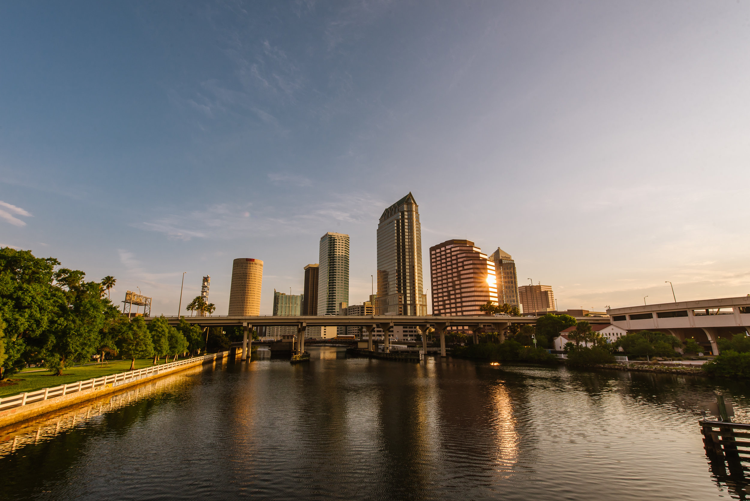 Tampa Stock-1.jpg