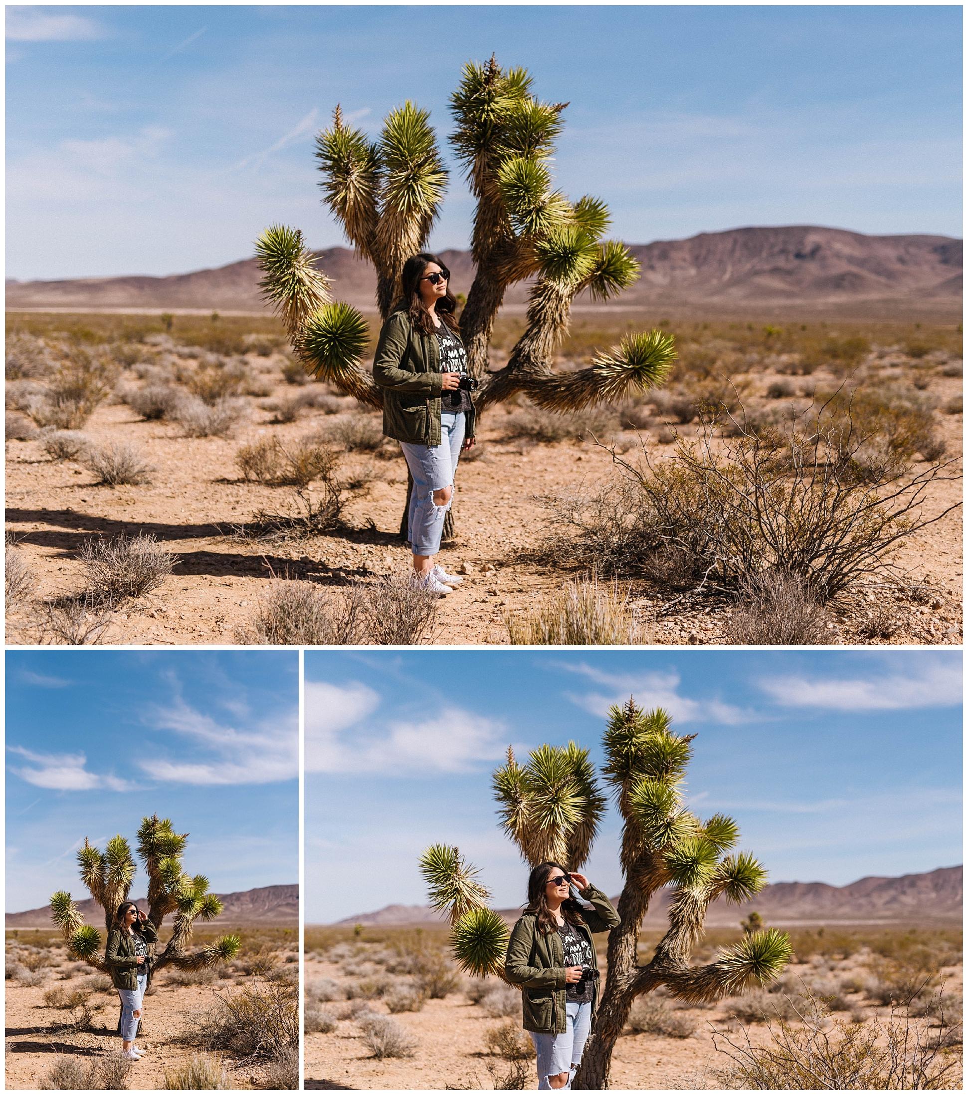 Seven-magic-mountains-vegas-desert-photography-wppi-2017_0011.jpg