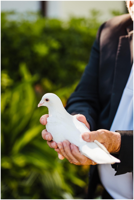 Tampa-luxury-wedding-photographer-mision-lago-private-estate_0023.jpg